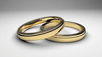 Telugu VIP Matrimonial services